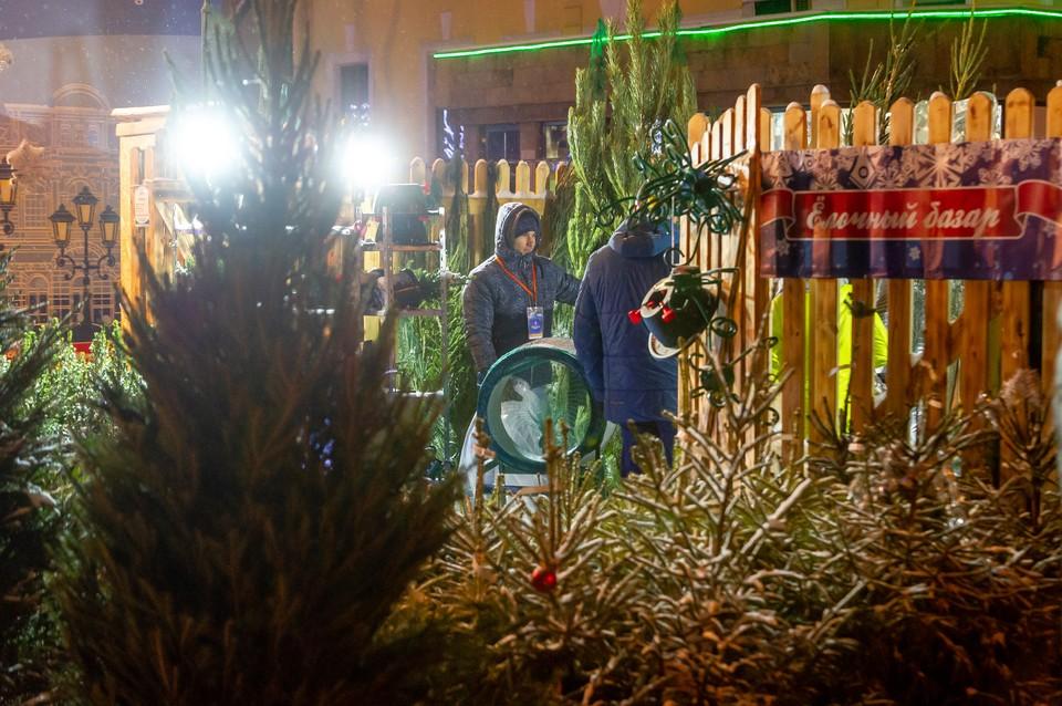 20 декабря в Петербурге открываются елочные базары.