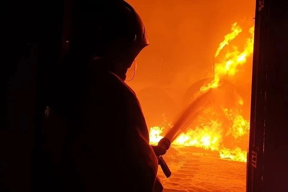 Фото: пресс-служба ГУ МЧС по Чечне