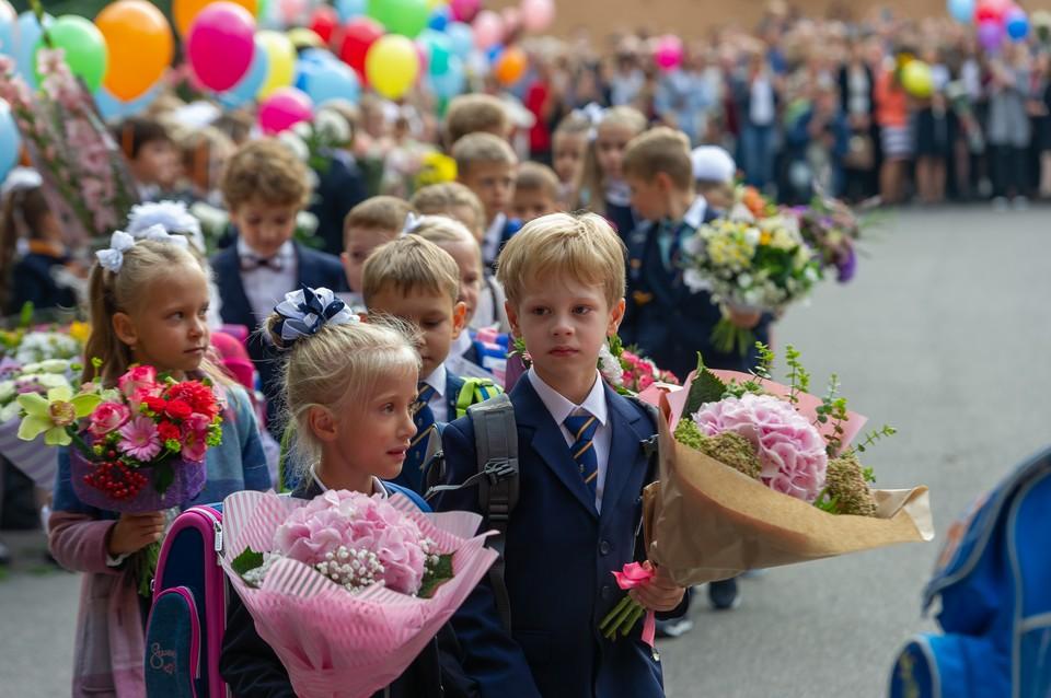 15 января в Ленинградской области начнется прием заявлений на поступление в первые классы школ