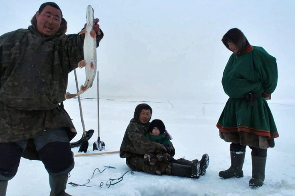 На Ямале квоты на традиционное рыболовство увеличили Фото: yanao.ru