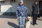 Массовое «минирование» детских садов во Владивостоке: сообщения с угрозами получили почти 20 учреждений