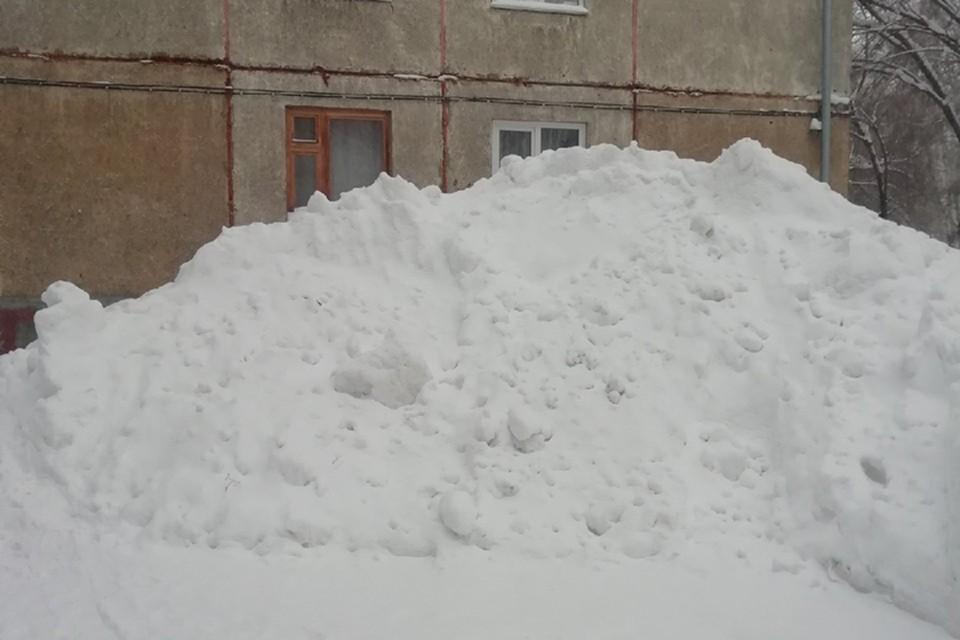 В некоторых частях Алтайского края снега выпало на 100 - 180% больше