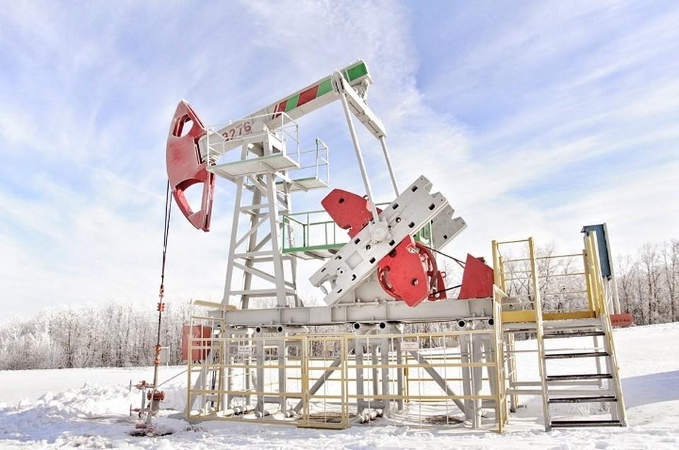 Всего «Башнефть» добыла в 2019 году 18,7 млн тонн нефти