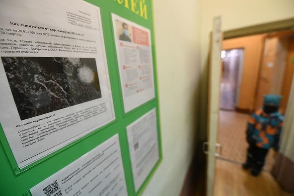 На коронавирус в Мурманской области проверяют и взрослых, и детей.