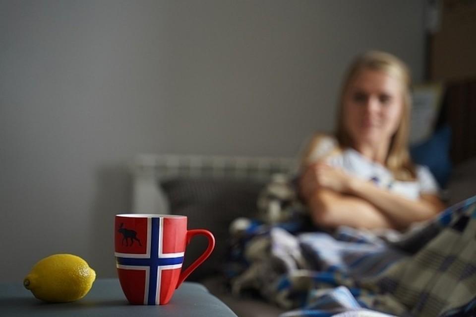 При первых признаках простуды следует остаться дома в самоизоляции