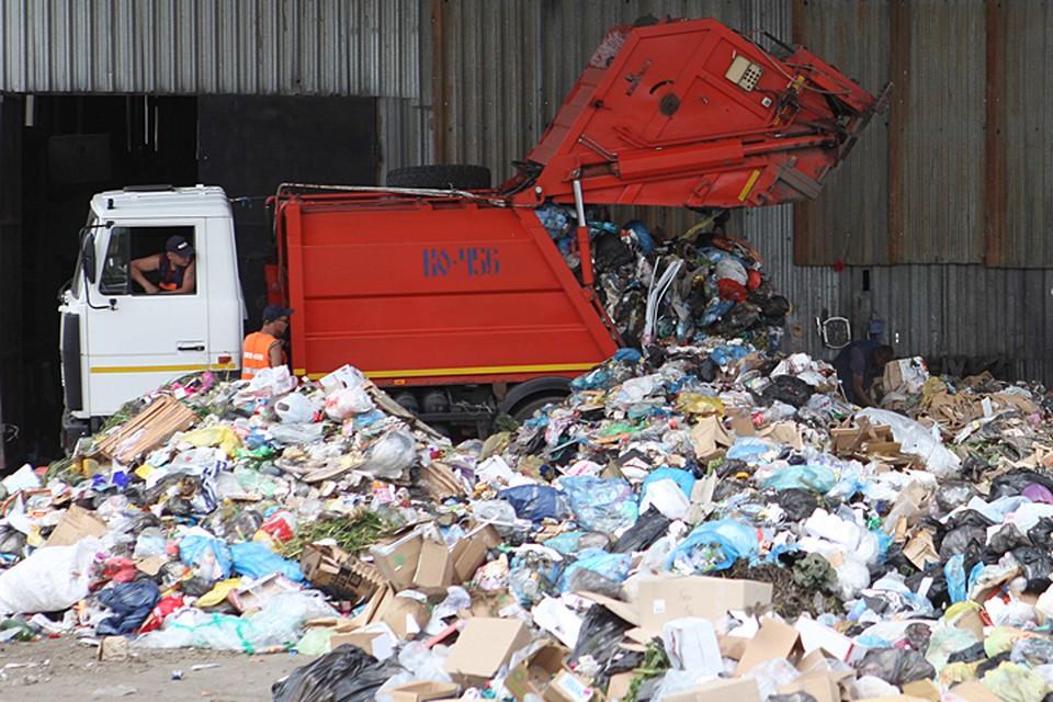 Количество мусора в жилом секторе резко выросло