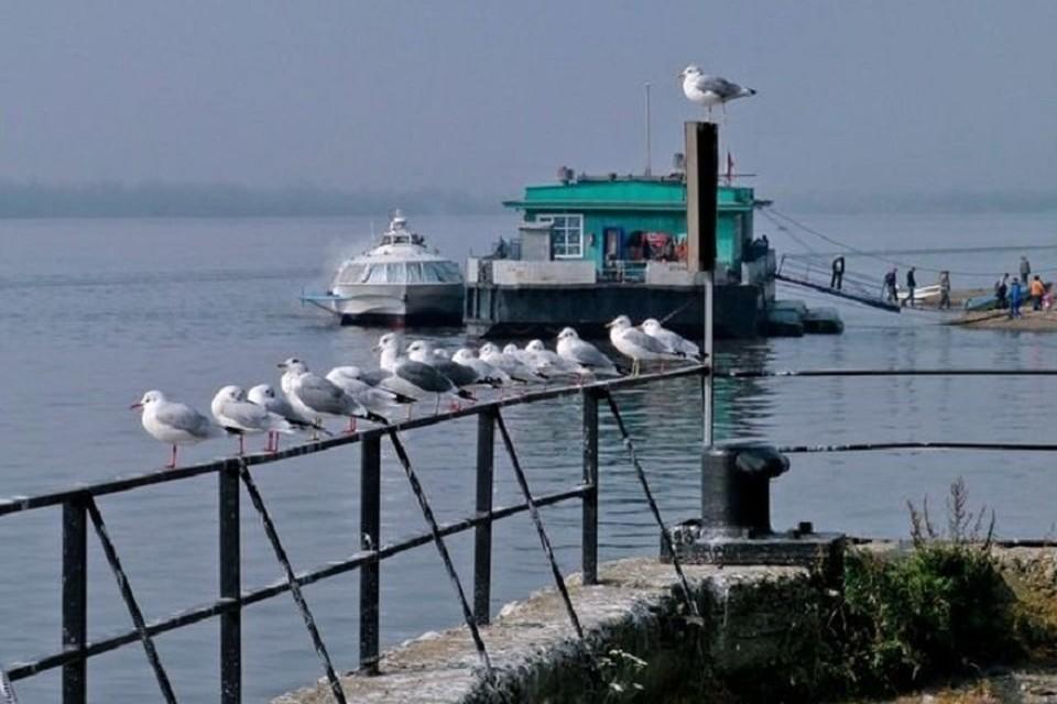 В селе теперь только птицы могут летать свободно - людям придется сидеть по домам. Фото: сайт администрации села Богородское