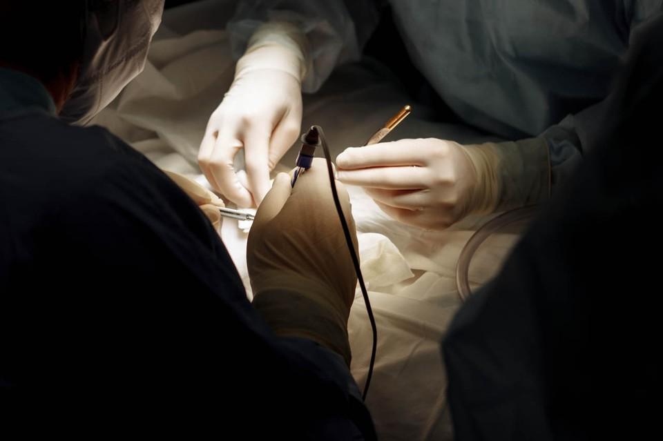 В Петербурге провели редкую операцию на головном мозге ребенка / Фото: СПбГПМУ