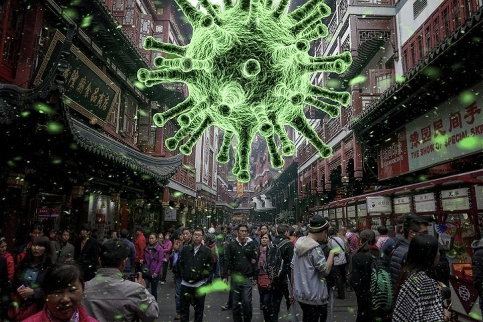 Австралия призывает расследовать причины вспышки коронавируса, чтобы предовтратить другую пандемию. Фотоиллюстрация: pixabay.com.