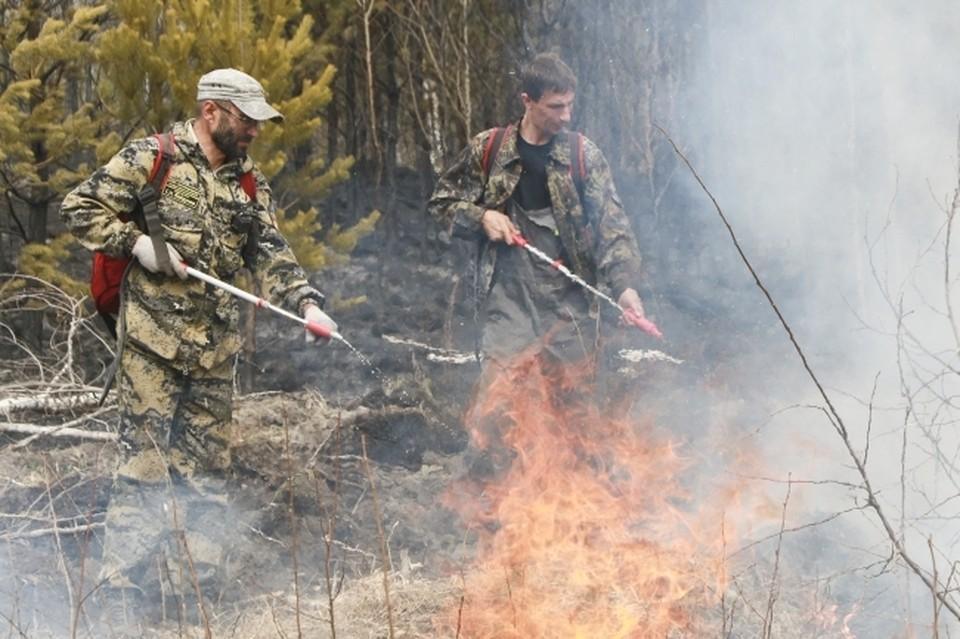 В Коми введут особый противопожарный режим