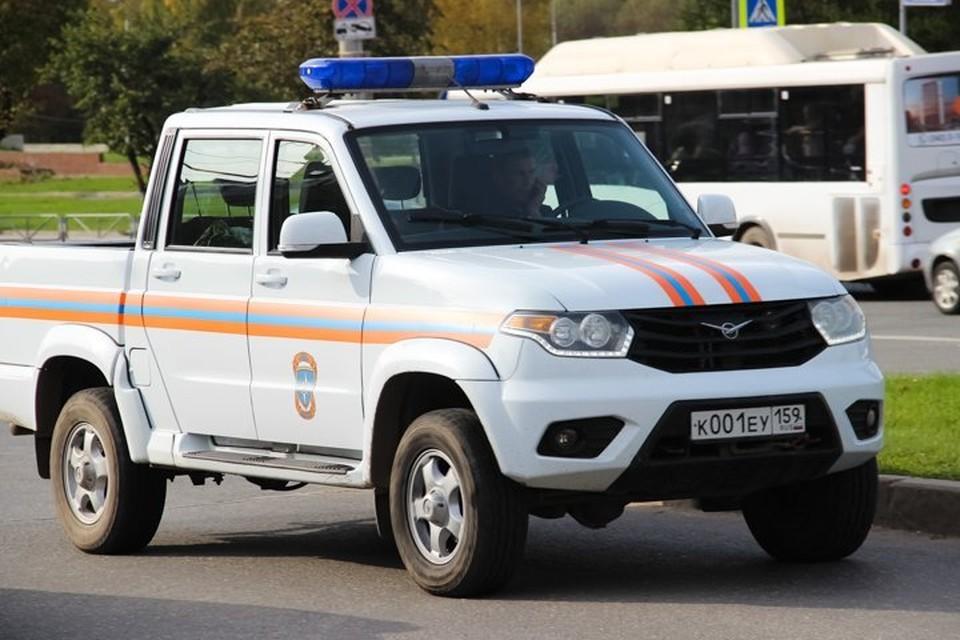 В поисках детей принимали участие спасатели и полицейские.