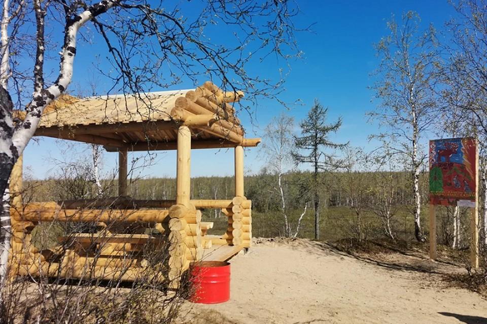 На Ямале появились новые зоны отдыха в лесах Фото: yanao.ru