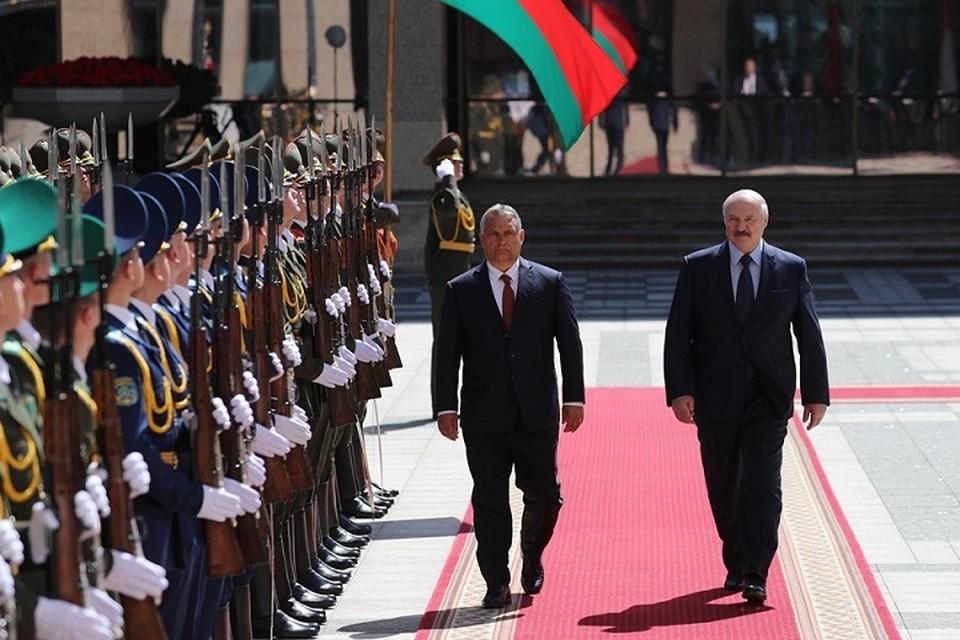 Виктор Орбан и Александр Лукашенко встретились 5 июня в Минске. Фото: belta.by.