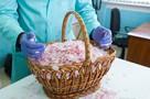 В Крыму возрождают античный рецепт получения розового масла