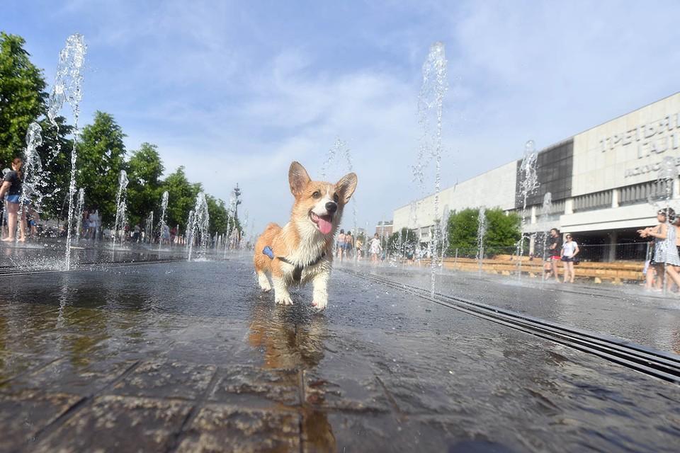 В Москве 17 июня побит температурный рекорд, державшийся с позапрошлого века!