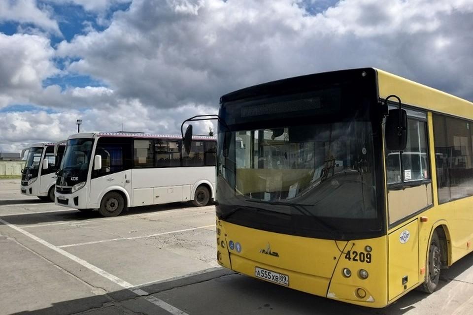 В Ноябрьске один день проезд в автобусах будет бесплатным Фото: Администрация Ноябрьска