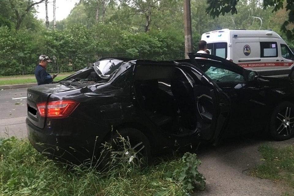 Из-за упавшего на машины дерева пострадали четыре человека. Фото: vk.com/spb_today