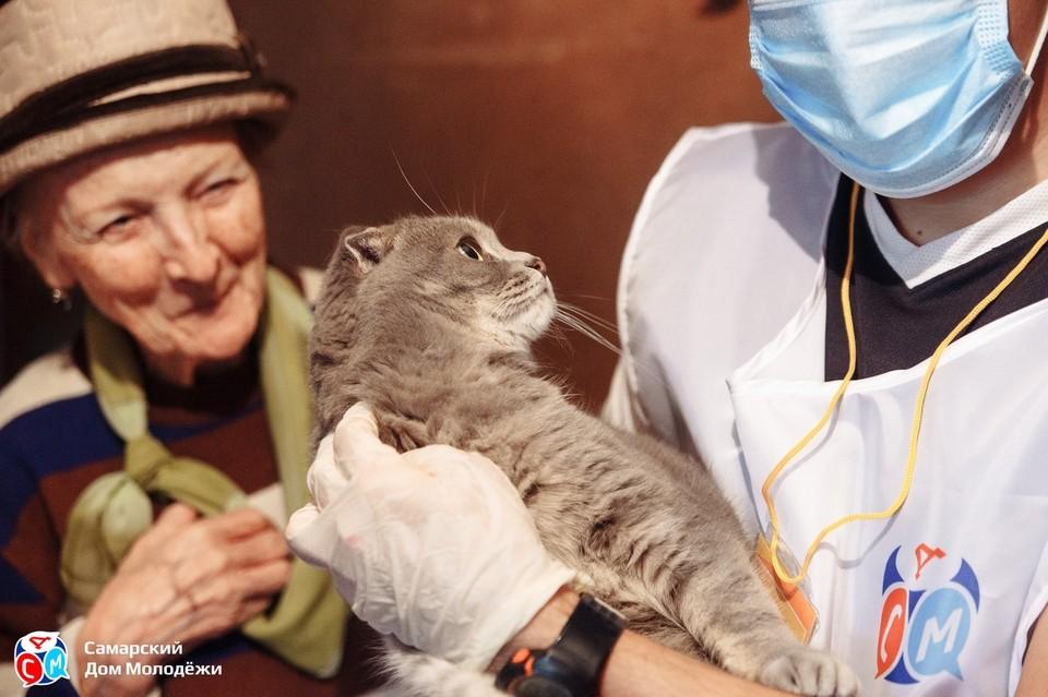 Таисия Адамовна переживала за судьбу котика. Фото: СДМ