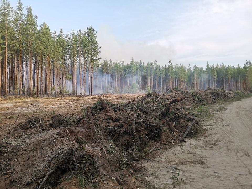 Фото: Добровольно-Спасательное Пожарное Формирование