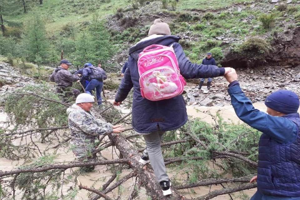 Детей пришлось переводить через реку по попаленному дереву Фото: МЧС Тувы
