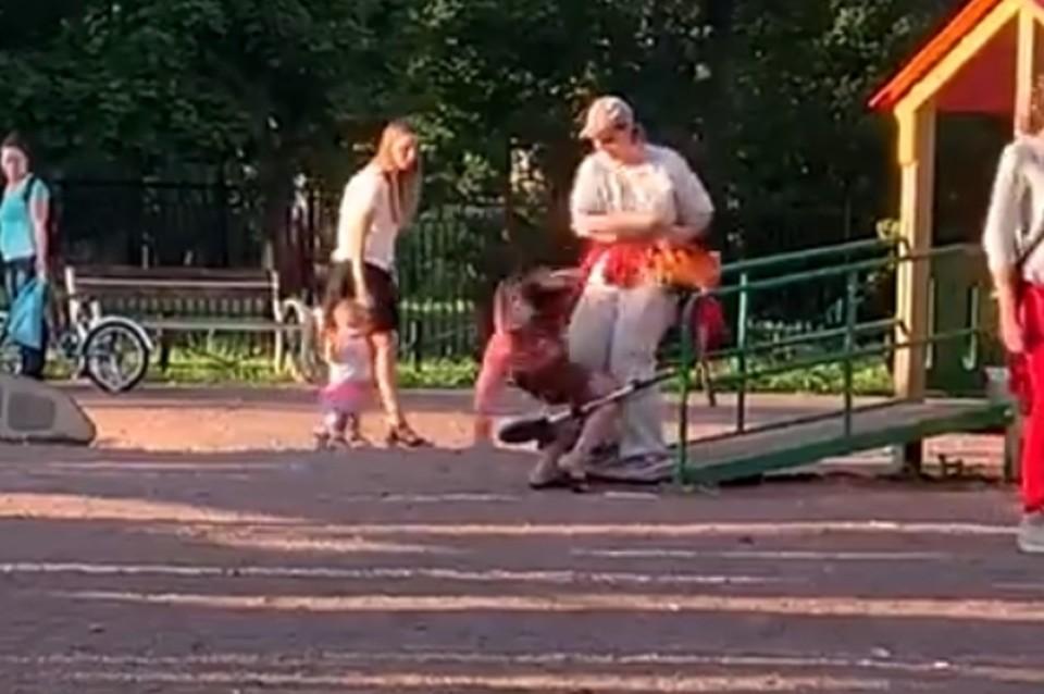 Женщина подралась с девочкой на детской площадке в Санкт-Петербурге. Фото: vk.com/veselyposelok