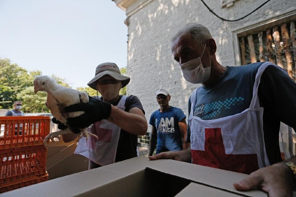 Всего в этом году Красный Крест планирует раздать цыплят для 1500 домохозяйств в 15 населенных пунктах Республики