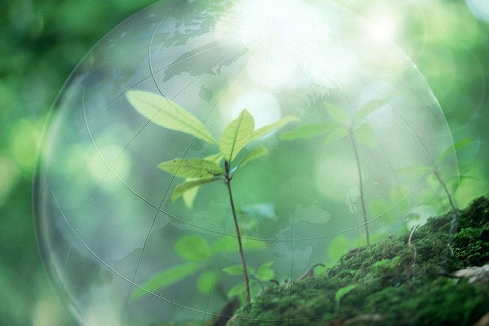 Здоровье планеты касается каждого. И мы можем внести свою лепту, чтобы изменить ситуацию!