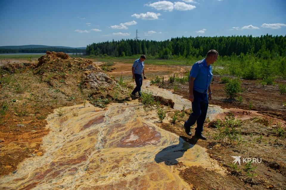 В июле сотрудники надзорного ведомства проверили, какая вода попадает в пруд.