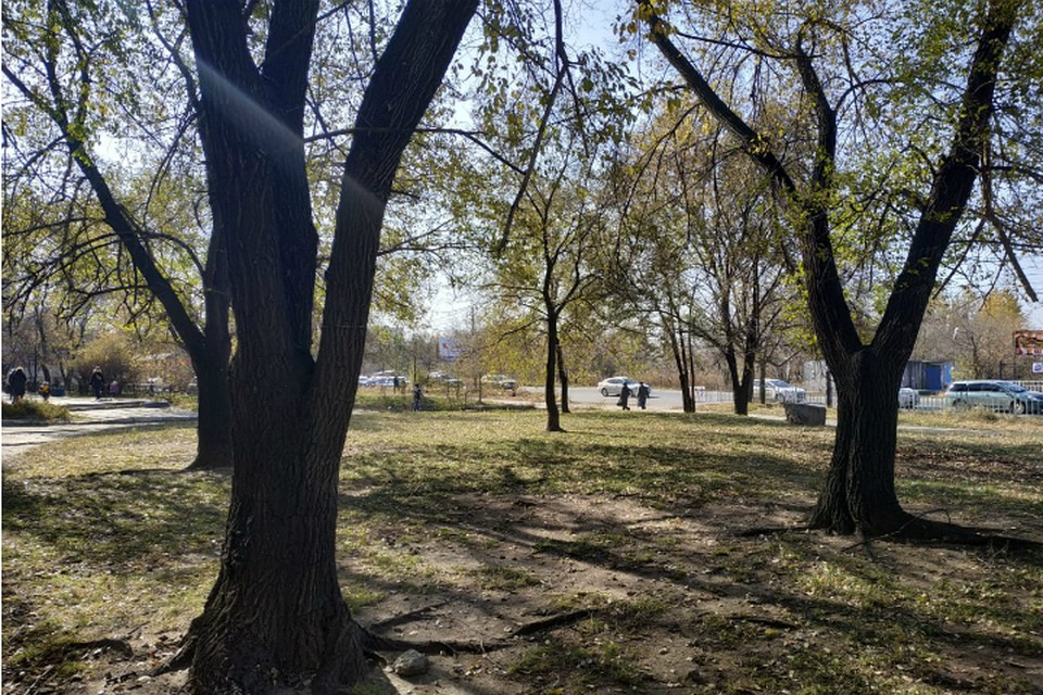 Коронавирус в Хабаровском крае: последние новости на 11 сентября 2020 года