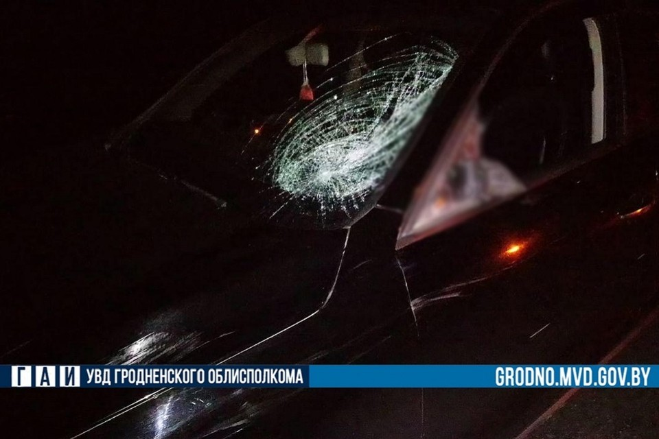 Водитель вышел из авто, чтобы помочь пострадавшему пешеходу, и обоих сбил встречный грузовик. Фото: ГАИ УВД Гродненского облисполкома.