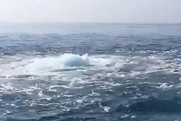 Отдыхающие сняли загадочное явление у берегов Сочи