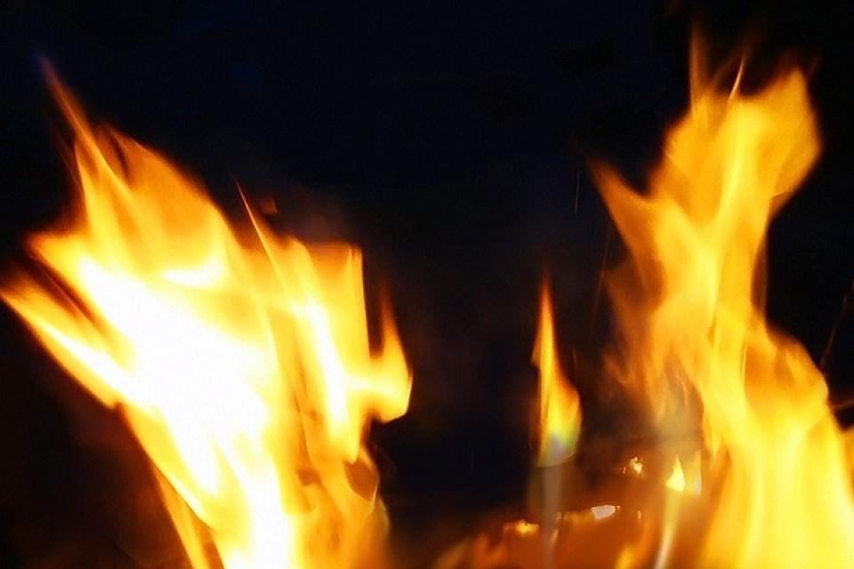 Росгвардейцы начали тушить огонь подручными средствами.