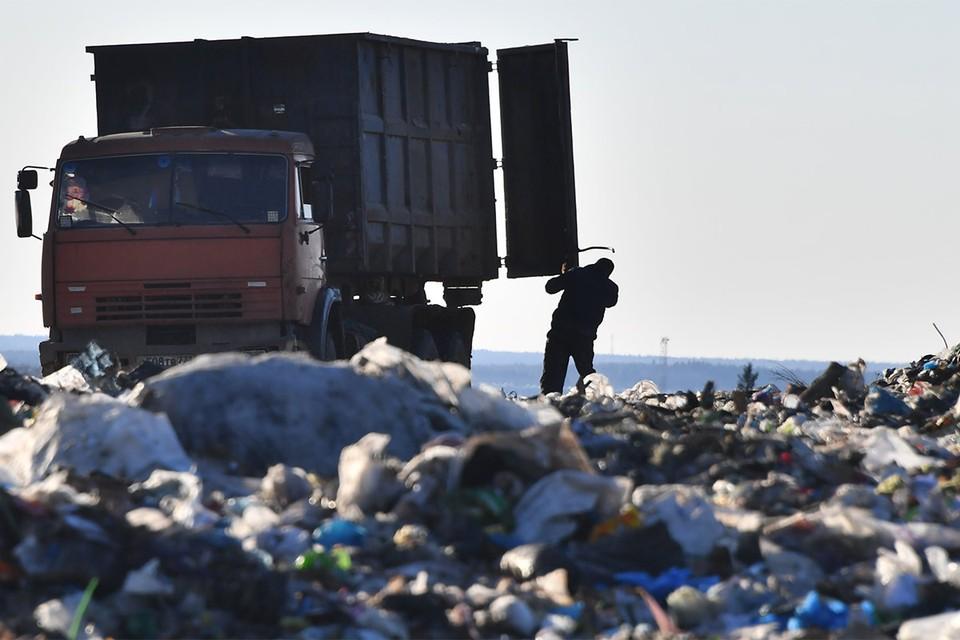 Деньги не пахнут: За ликвидацию тысяч свалок россиянам придется заплатить из своего кармана