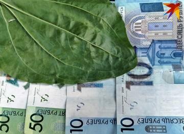 «Позитивных факторов нет»: эксперты прокомментировали, рухнет ли белорусский рубль вслед за российским