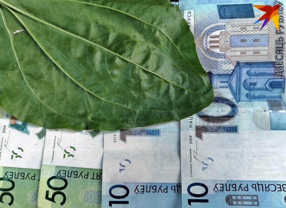 Экономики России и Беларуси сильно связаны, и обвал российского рубля однозначно приведет к девальвации белорусского.