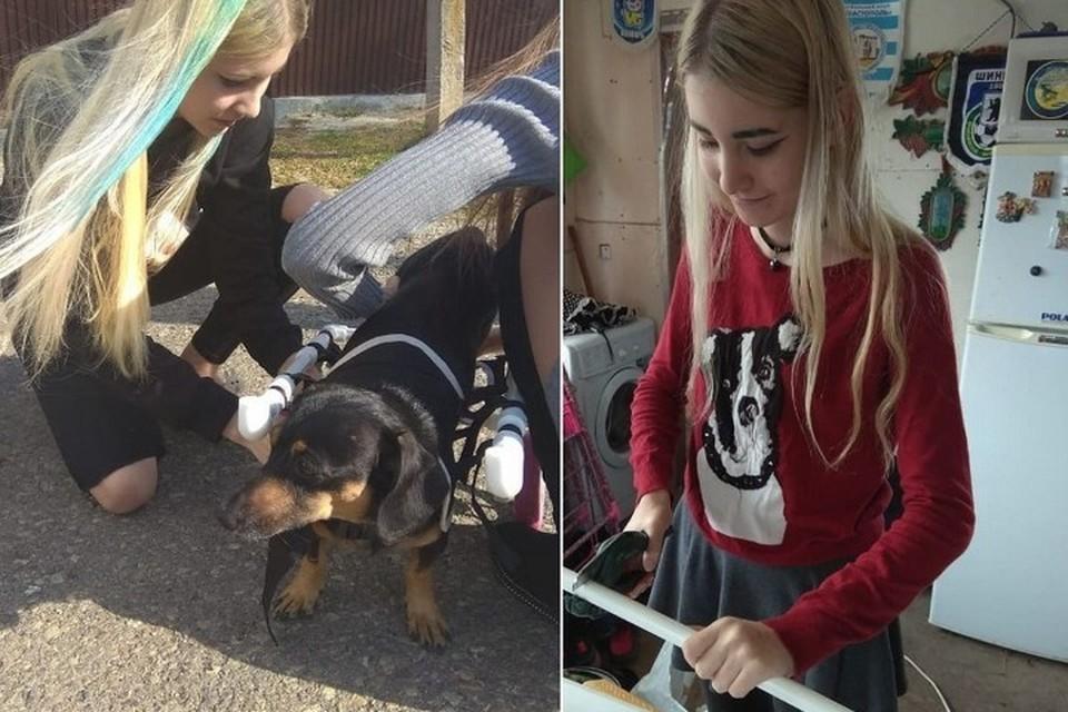 Кристине 16 лет, и она делает коляски для собак-инвалидов.