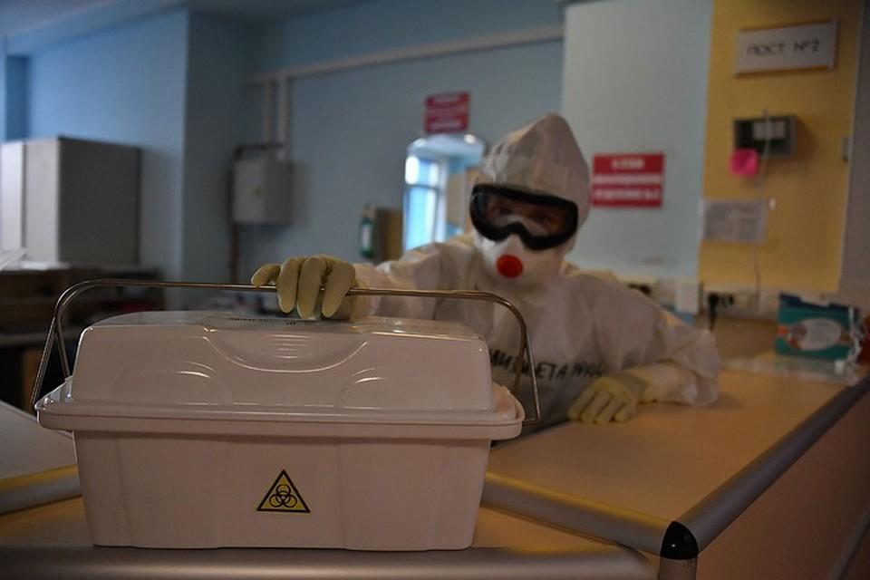 Вакцинация от коронавируса препаратом «Спутник V» может начаться в конце ноября