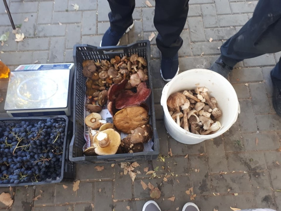 Лесные грибы продают прямо на улице.