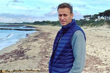 Немцы о Навальном: Такие гости нам не нравятся