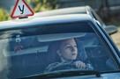 МВД предлагает разрешить управлять машиной с 17 лет