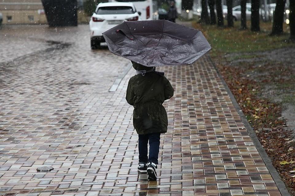Синоптики предупредили москвичей о ледяных дождях в ночь на четверг