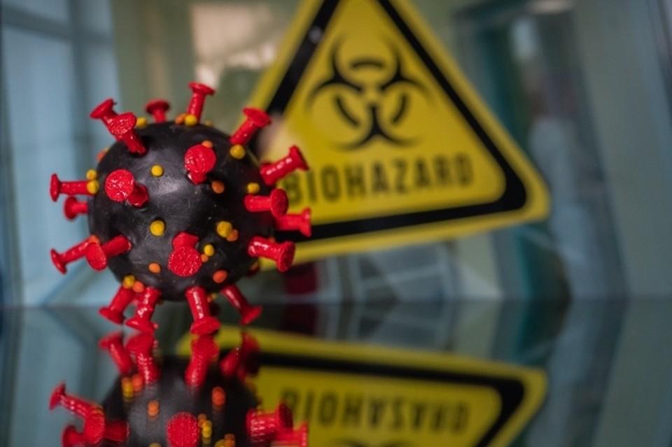22 ноября: в Белгородской области за минувшие сутки у 170 жителей подтверждена коронавирусная инфекция