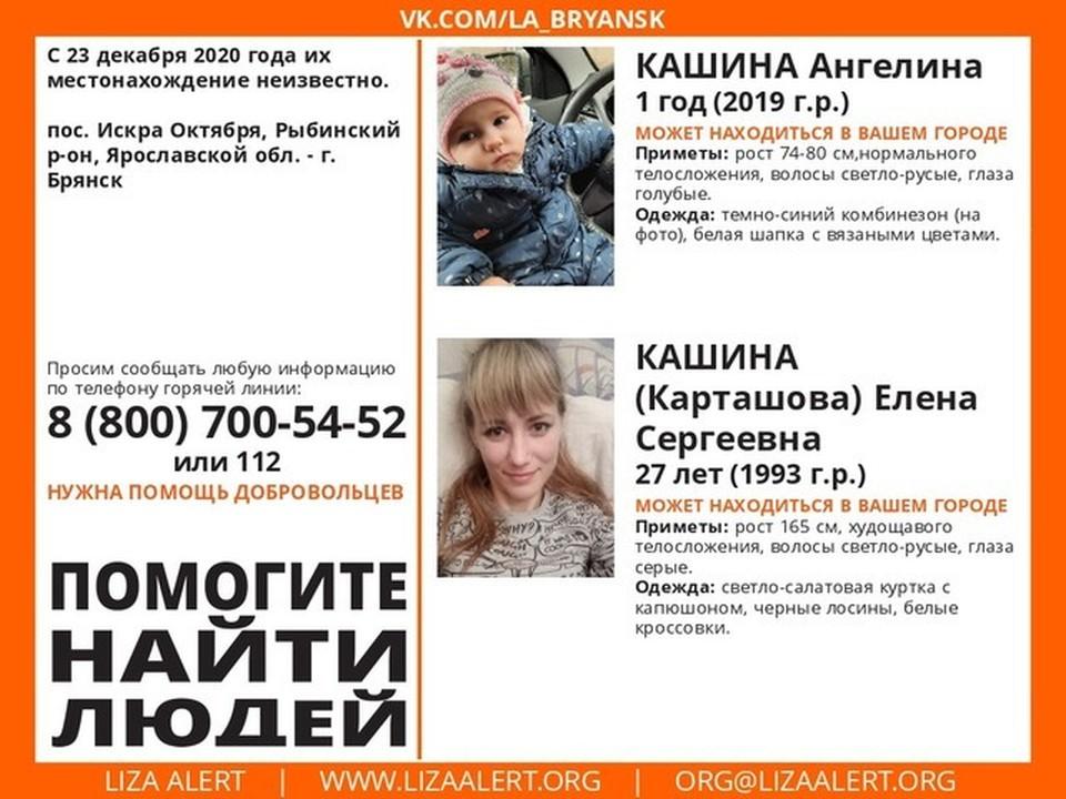 Фото: группа «Поисковый отряд «ЛизаАлерт» Брянской области» в vk.com.