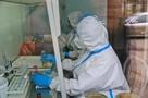 Коронавирус в Алтайском крае, последние новости на 7 января 2021: коронавирусом переболело почти 1,5% населения региона