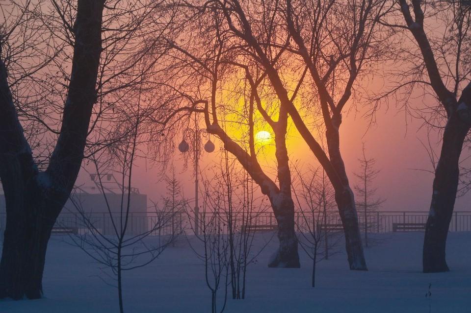 Какой будет погода до конца января в Алтайском крае