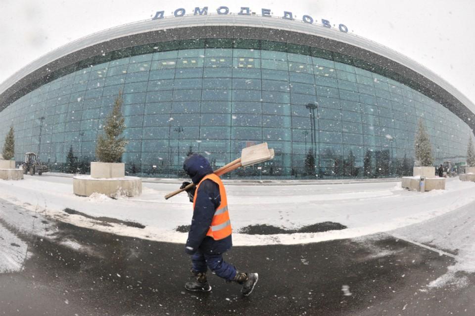 Омичи не смогли вовремя улететь до Домодедово.