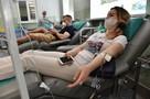 Поделись антителами: Больше 250 крымчан, переболевших коронавирусом, сдали плазму