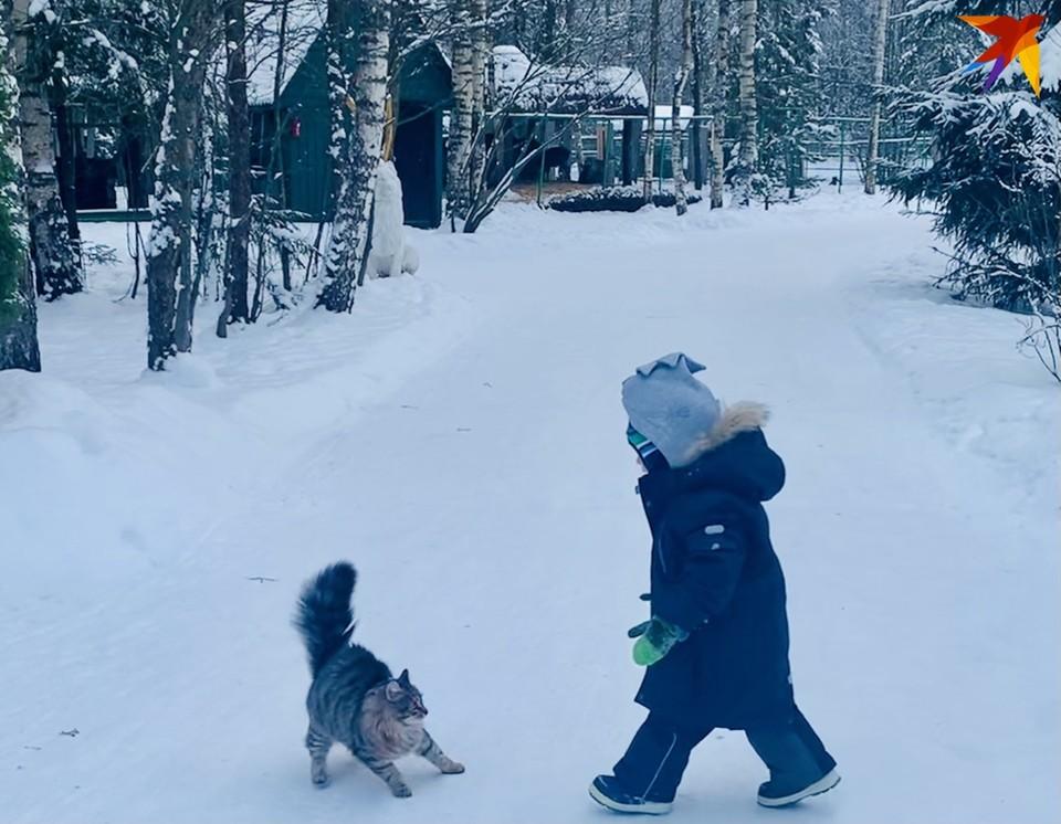 Жителей Тверской области предупредили о ледяном дожде и гололедице.