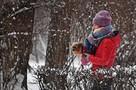 Стала известна погода в Татарстане на 23 и 24 января