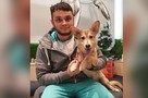В Челябинске провели уникальную операцию щенку, выброшенному на улицу из-за редкой болезни